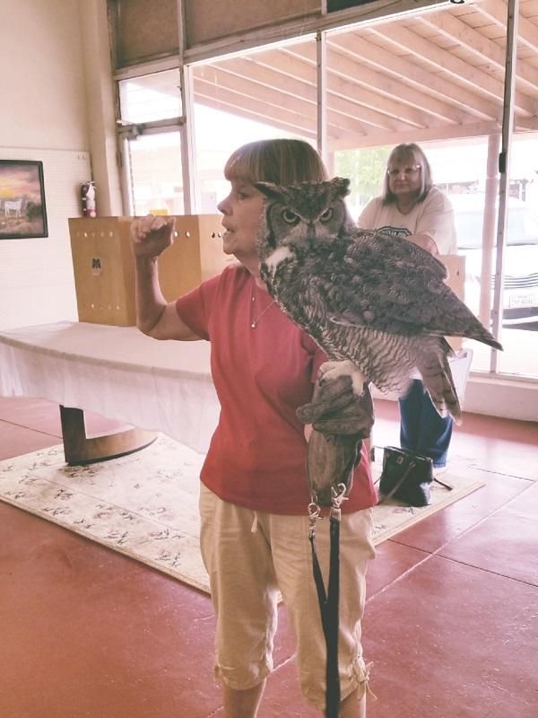South Plains Wildlife Rehab Center