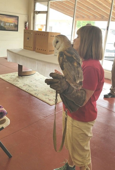South Plains Wildlife Rehab Center