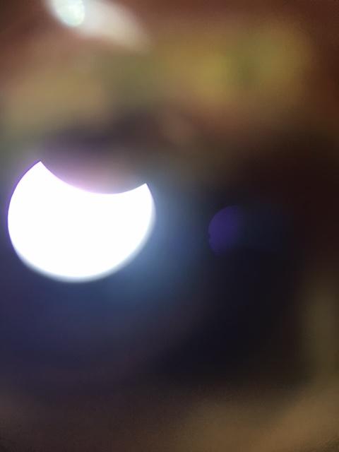 Seminole Eclipse